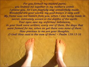 Feet in shallow water, Bible verse about being wonderfully made